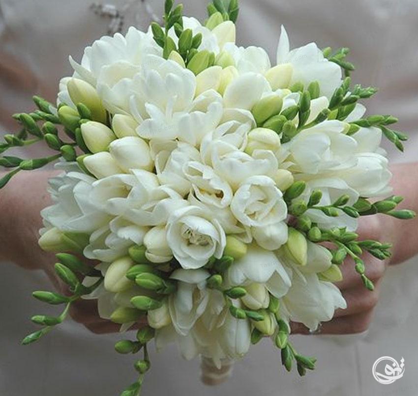 زیباترین و بهترین مدل دسته گل عروس اروپایی