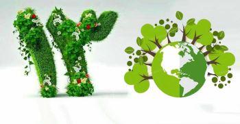 سبزه گره زدن برای چیست؟ فلسفه گره زدن سبزه در سیزده به در