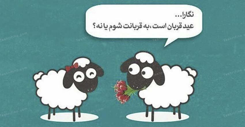 عید قربان کی است