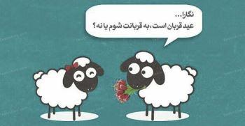 تعداد پیام تبریک عید سعید قربان رسمی و دوستانه